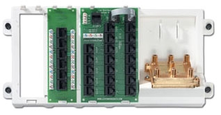 LEVITON 47606-AHT : 2GHZ ADV TEL & VIDEO
