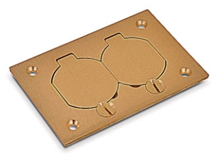 STEEL-CITY P-64-DS MULTI-GANG DUPLEX COVER PLATE 4.5X3IN BRASS